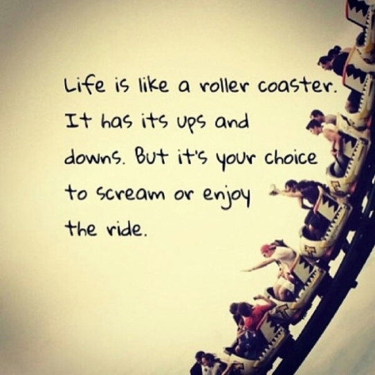 95263-Life-Is-Like-A-Roller-Coaster
