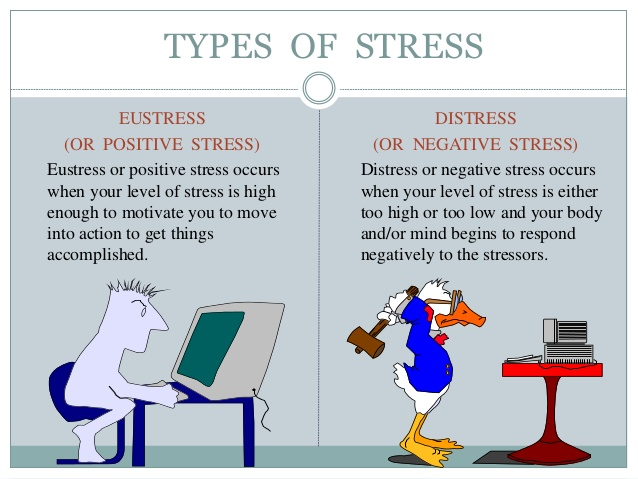 the pressures and stressors in school As students transition into high school, many see  intelligence and reported academic pressures  body when stressors are piling up—through daily.