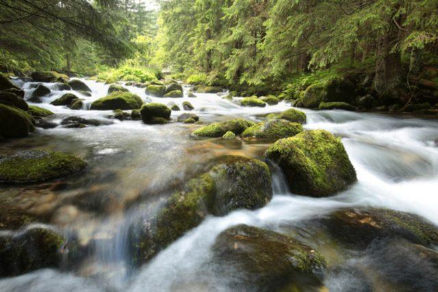 flowingriver