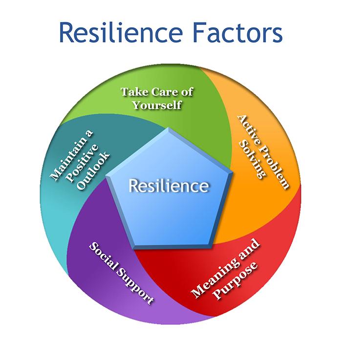 Dr. Andrea Dinardo Resilience