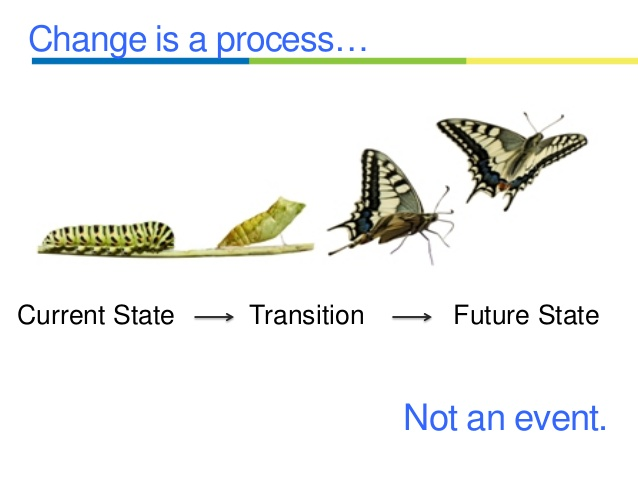 Change Quote DrAndreaDinardo.com.