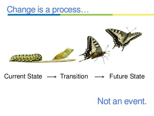Change Quote DrAndreaDinardo.com.